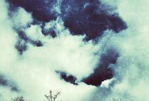 Nature / My pics