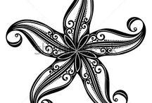 seastars / tengeri csillag