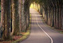 Beatiful roads