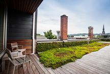 green roofs  / by mossArchitects