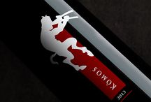 Komos / Komos is a quality wine produced in Italy. / by Carlo D'Angelo