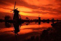 Don Quixote / by Valerie Thorpe