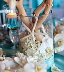 Nicole Dahlke Wedding Inspiration / Inspiration for your wedding