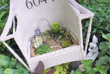 Fairy Gardens / by Laurie Mohr