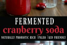Fermented drinks