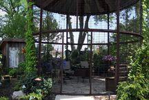 Dream Garden / by Elizabeth Clarke