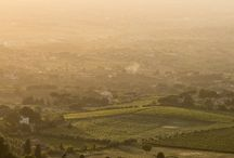 Italy's Wine and Wineries / Lovely vistas and unforgettable vintages from Italy