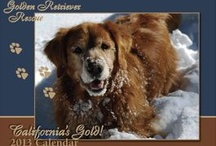 Golden rescue groups
