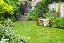 Gardening / Ideas for summer