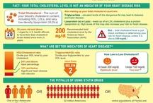 High Cholesterol - Hypercholesterolaemia / All about High Cholesterol