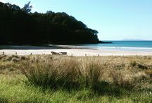 New Zealand ♥ / Our beautiful country