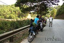 Hanoi Scooter Tours