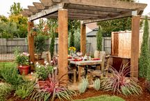 Backyard / by Veronica Pisano