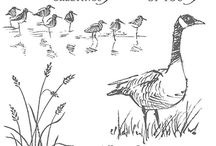 SU Wetlands Stamp Set / by scrappin' gisi