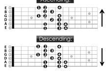 Bass - Guitar