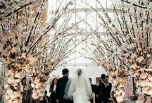 Ultimate Wedding / Gowns & Decoration.