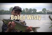 Fishing videos / Filmy wędkarskie