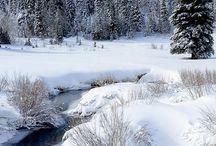 Lovely snowy scenes