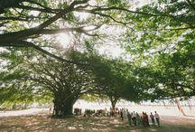 Port Douglas Wedding Ceremony Locations
