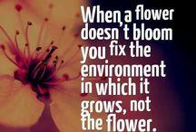 BECCA FLOWERS....