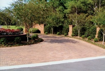 """Landscape & Hardscapes / Landscape & Design ideas... Multiple sources; also from my friends, Foundation Services in Ocala, FL (352-622-9218) providing all stages of design & development matching your taste, artistic goals, maintenance & budget objectives, plus manual specifically for your site guaranteeing the life, longevity & lushness of your investment... and Naples, FL area, none other than Landscape Designer JoAnn Smallwood, who first created """"black pools"""" in lavish settings and pioneered lush waterscapes!"""