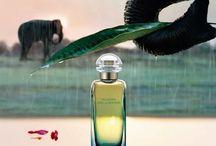 Hermes until Jardin a press launch mousson