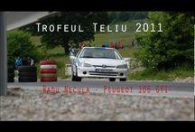 Driver Radu Necula in Romania Speed Hill Climb Championship