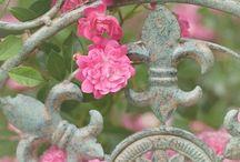 ~✿ Garden Gates / Various designs of gates for fencing around the garden. / by jrachelle