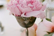 Peonies and other (flowers)