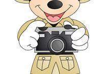 Mickey /safari