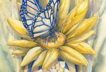 Jody Bergsma. Illustrations