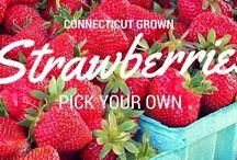 CT Grown Strawberries