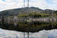 Lakes / South West Tasmania