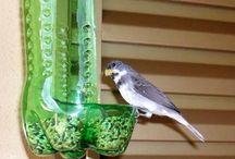 suporte para pássaro alimentar