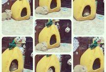 Deen Rabbit