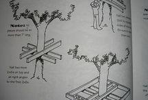 projeto casa árvore
