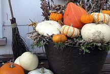 Décorations d'automne