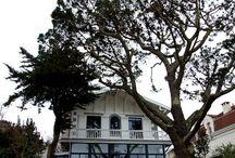 Villas de charme... / Villas de rêve et de charme sur le bassin d'Arcachon