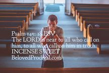 Beloved prodigal / A place of hope, prayer and faith where you can discover the love of God for all of us who are prodigals at heart