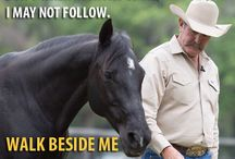 horsemanship motivation