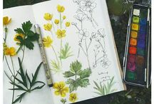 Herbarium / Sketchbook
