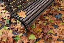 Bienvenido otoño. adiós manchas! / damos la bienvenida al otoño y adiós a las manchas que nos ha dejado el verano.