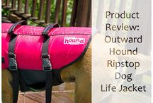 Product Reviews: Dog Products