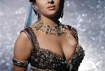 Gina  Lolobrigida
