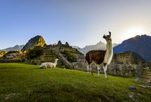 Latin America / Glittering glaciers, vast deserts, towering peaks, thriving rainforests, remote sandy beaches, mouthwatering cuisine; the choices are endless in Latin America.