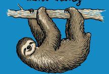 sloth-lenochod