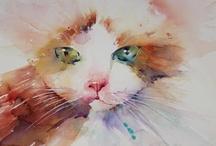 CHATS - CATS / Photos ou dessins de chats