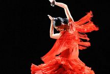 TANZEN modern, Flamenco, Ballet