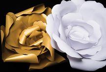 Fiori giganti  - Giant flower-