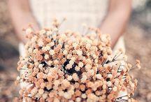 Wedding Flowers / by Tasha Theoc